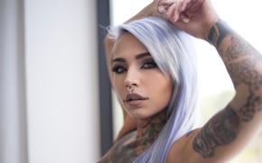 Картинка взгляд, милая, пирсинг, татуировки, tattoo, Suicide Girls, Fishball Suicide, пурпурные волосы, мечта свекрови