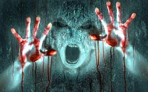 Картинка стекло, страх, ужас