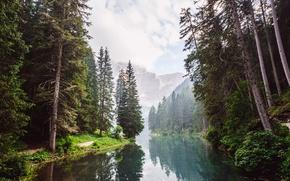 Обои лес, вода, облака, деревья, горы, отражение, река, скалы, дымка, тропинка