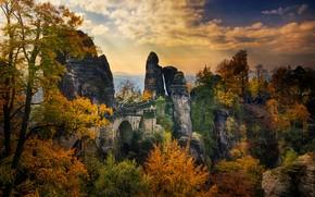 Обои осень, люди, скалы, деревья, Германия, Саксония, Бастайский мост