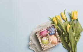 Картинка цветы, праздник, яйца, пасха, тюльпаны