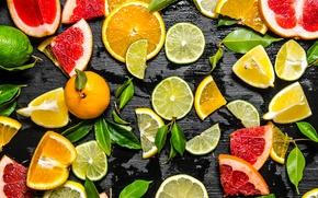 Обои лайм, фрукты, лимоны, апельсин, грейфрут, дольки, цитрусы, фон, мандарин