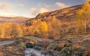 Обои горы, осень, деревья, Англия, Камбрия