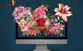 Обои photoshop, mac, monitor, фотошоп, монитор, apple, мир, photo, цветы