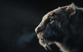 Обои sabertooth, хищник, Manuel Peter, арт, клыки, зверь
