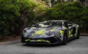 Картинка Lamborghini, Aventador, Camo