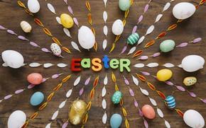 Картинка Пасха, Яйца, Лепестки, Буквы, Праздник
