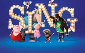Картинка cinema, movie, animal, gorilla, film, animated film, animated movie, Sing