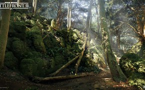 Картинка лес, природа, камни, Star Wars Battlefront 2, Mazs Castle Forest