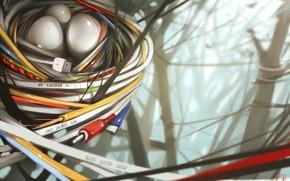 Картинка арт, кладка, гнездо, кабель, провод, Alexandra GaudiBuendia Khitrova, New nature