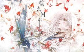 Картинка листья, кровь, катана, парень, by kuroe