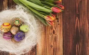 Картинка Цветы, Тюльпаны, Пасха, Яйца, Праздник, Гнездо