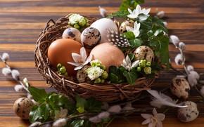 Картинка яйца, Пасха, гнездо, верба
