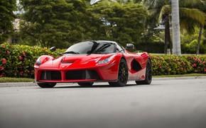 Картинка Ferrari, Beautiful, Scuderia, Italia, RED, LaFerrari