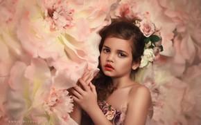 Картинка взгляд, цветы, руки, девочка, венок, Annie Mitova