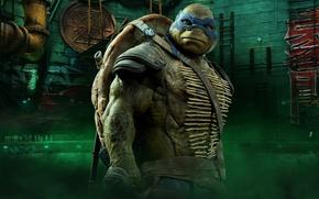 Картинка cinema, TMNT, Leonardo, movie, Teenage Mutant Ninja Turtles, ninja, hero, film, shinobi, yuusha, bysachso74