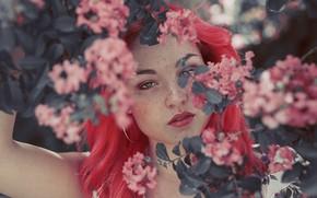 Картинка взгляд, цветы, лицо, фон, волосы, цвет