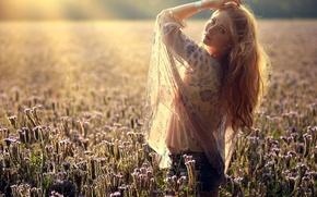 Картинка поле, девушка, свет