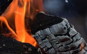 Картинка огонь, дрова, уголь