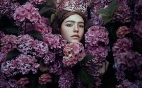 Картинка девушка, цветы, принцесса, гортензия, Nymph, Bella Kotak