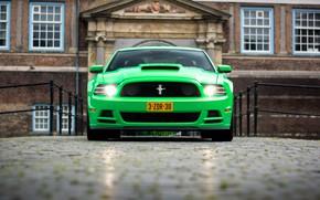 Картинка Mustang, Ford, 302, Boss