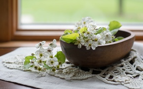 Картинка груша, миска, цветение, салфетка, цветки груши