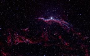 Картинка Veil Nebula, Туманность Вуаль, в созвездии, Лебедя