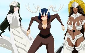 Картинка Bleach, anime, evil, manga, hollow, japonese, by alexpetrow, apachi, Milaroza, Sunsun