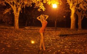 Картинка листья, деревья, ночь, огни, секси, парк, модель, фигура, стройная, платье, прическа, блондинка, фонари, туфли, ножки, …
