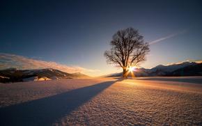 Картинка Солнце, Природа, Облака, Зима, Горы, Восход, Деревья, Снег, Тень, Солнечные Лучи