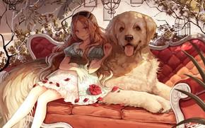 Обои собака, аниме, девочка