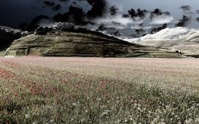 Картинка поле, небо, природа, город, маки, гора