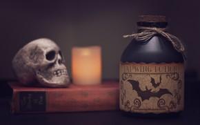 Обои череп, книга, свеча