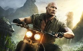 Обои джунгли, приключения, фэнтези, Jumanji: Welcome to the Jungle, Джуманджи: Зов джунглей, водопад, фон, Dwayne Johnson, ...