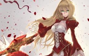 Картинка девушка, лепестки, сейбер, Fate / Grand Order