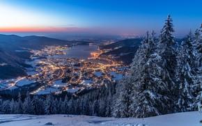 Картинка зима, лес, снег, горы, озеро, Германия, ели, Бавария, панорама, ночной город, Germany, Bavaria, Bavarian Alps, …