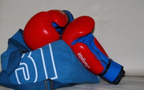 Картинка перчатки, сумка, боксерские перчатки
