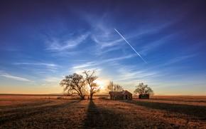 Картинка поле, природа, дом, утро