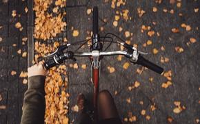 Картинка осень, девушка, велосипед, брусчатка, Rona Keller