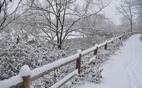 Картинка Зима, Дорога, Снег, Winter, Frost, Snow, Road, Сугробы