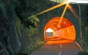 Картинка зелень, туннель, лучи солнца