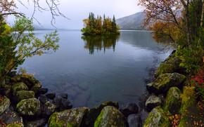Картинка деревья, горы, туман, камни, остров, Сейдозеро