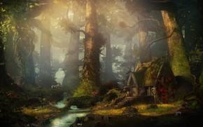 Обои лес, деревья, дом, ручей, Forest spring