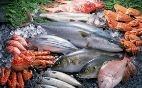 Картинка рыба, крабы, ассорти