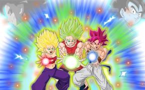 Картинка DBS, game, anime, asian, manga, Dragon Ball, Dragon Ball Super, japonese