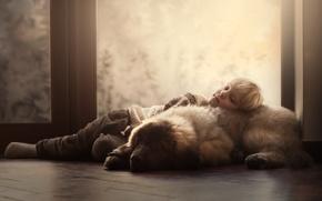 Картинка дом, собака, мальчик