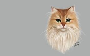 Картинка кошка, Anne Novik, Smoothie cat, арт, пушистик, кот