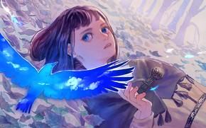 Картинка взгляд, птица, девочка