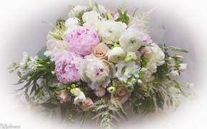 Картинка цветы, Букет, пионы