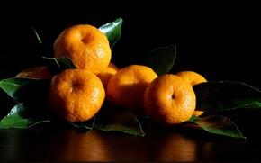 Картинка зима, новый год, декабрь, мандарины, натюрморты, новогоднее настроение, композиции, мандариновое настроение